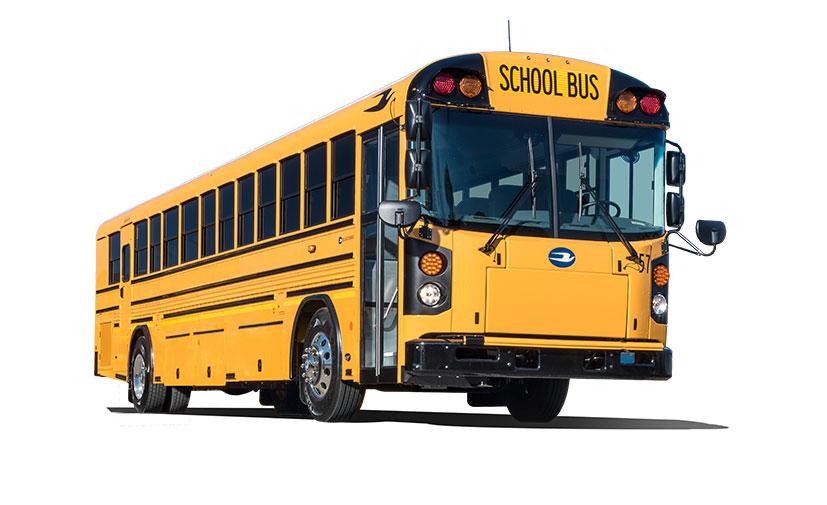 bluebird-schoolbus-blunt